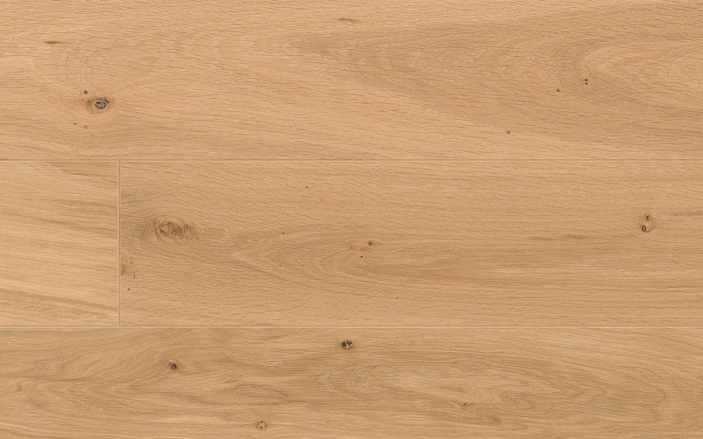 Château by adler - Oak Champagne standard wire brushed color oiled - 19 x 180-350 x 1800-5000 mm